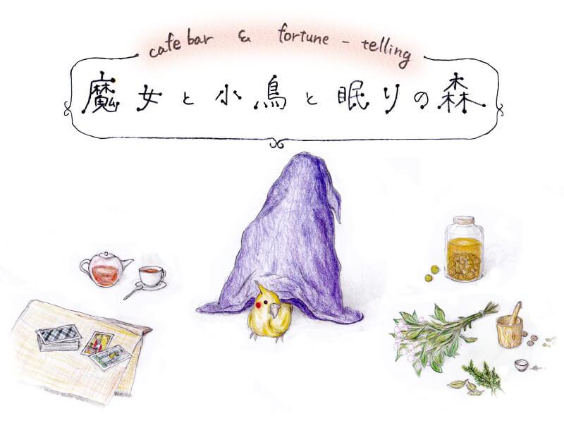 【卒業:土曜夜枠にNEW OPEN】魔女と小鳥と眠りの森