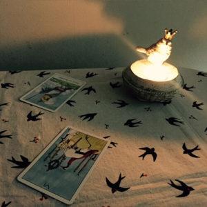 【土曜夜枠にNEW OPEN】魔女と小鳥と眠りの森